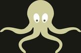 EcoOctopus