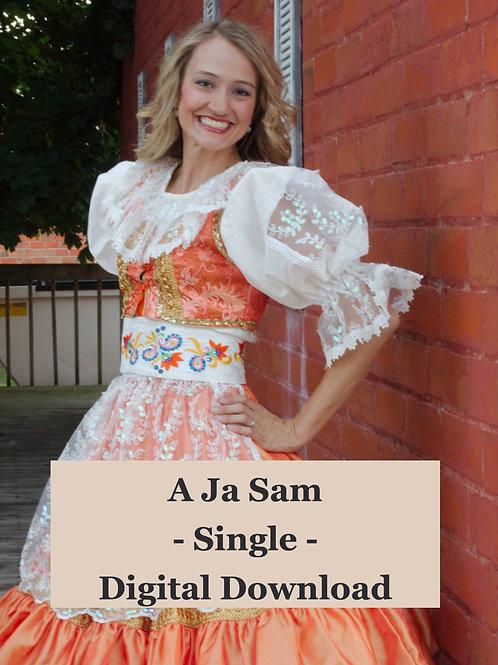 DIGITAL DOWNLOAD - A Ja Sam - SINGLE
