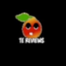 te review logo.png