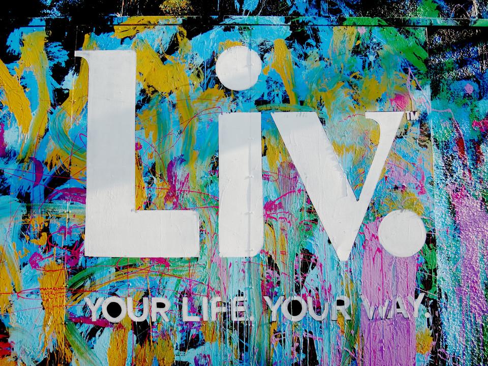 I Chose To Live
