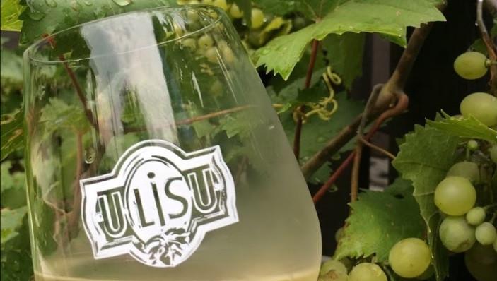 Sklenice oroseného vína U Lisu