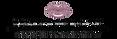 Natalie_Page_Aesthetics_Logo-removebg-pr