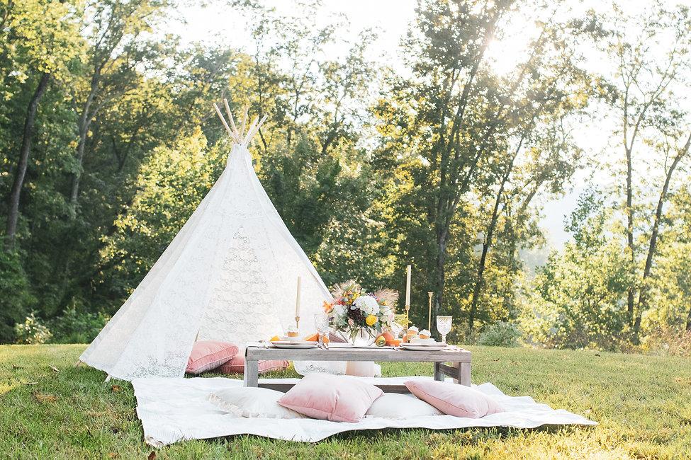 Charlottesville picnic