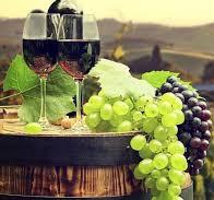 Wine tastings!