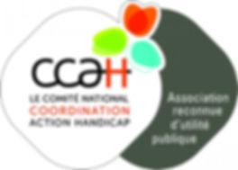 logo CCAH HD.jpg