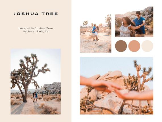 joshua tree national park engagement couples california photographer
