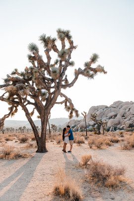 joshua tree california photographer