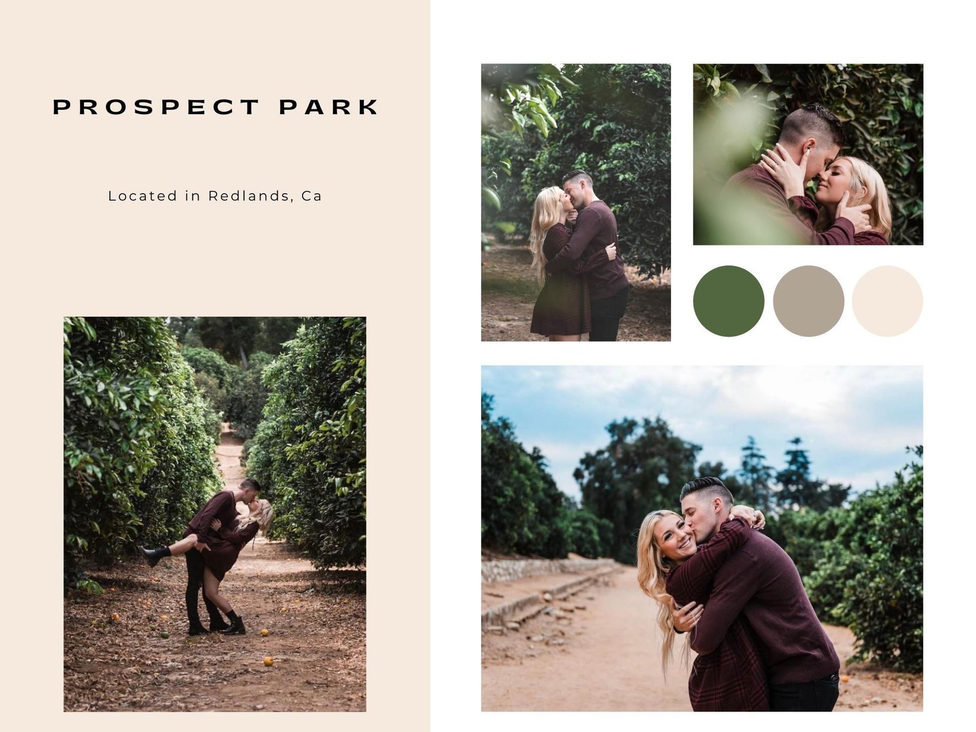 prospect park redlands california photographer engagement couples photoshoot