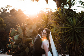 ABS_2789.jpsan Diego california wedding elopement photographer old cactus gardeng