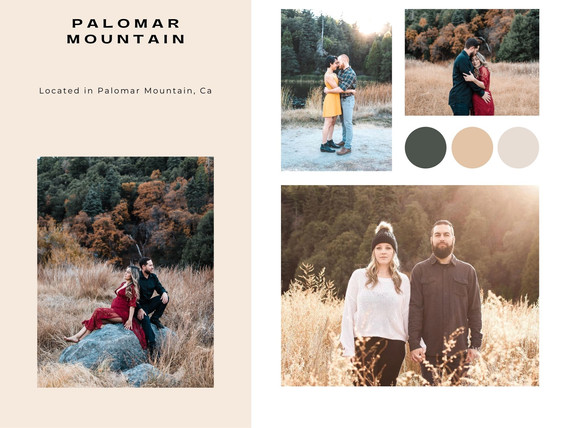 palomar mountain state park california photographer couples maternity photoshoot