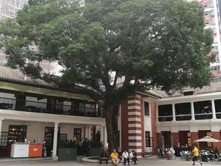 Tai Kwun: A neighborhood community conscious centre for heritage & arts