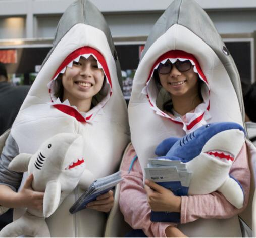 Shark ambassadors_Pic 3