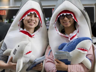 """Visiting the Dried Sea Food Market with  HK Shark Foundation's """"Shark Lady"""""""