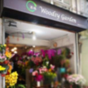 Woodsy Garden