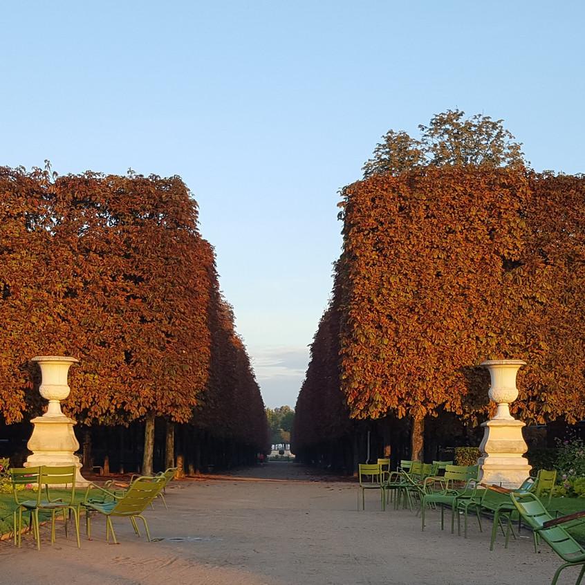 Tuileries in September