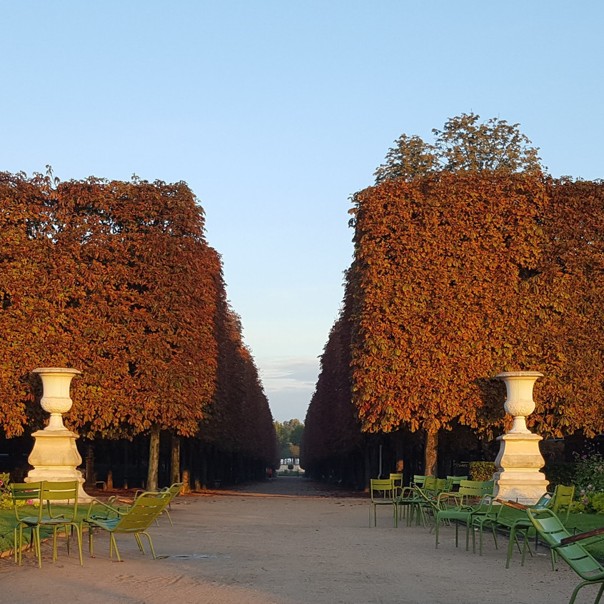 Tuileries-september