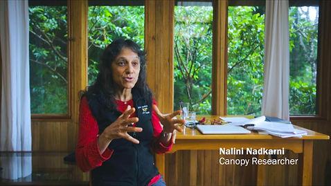 Nalini Nadkarni, Climbing Giants Documentary