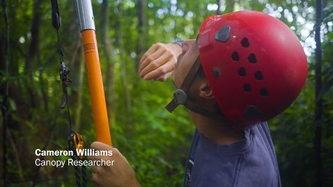 Cameron Williams, Climbing Giants Documentary