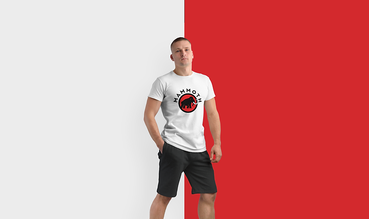 Logotype-&-Graphic-Identity-t-shirt-graphic-design-red-mammoth-san-francisco-vertiz-2.png