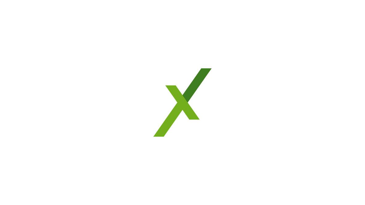 Logotype-&-Graphic-Identity-extreme-jani