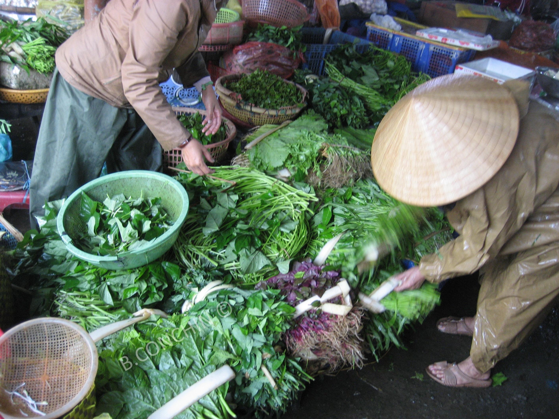 Marché aux herbes vietnamien