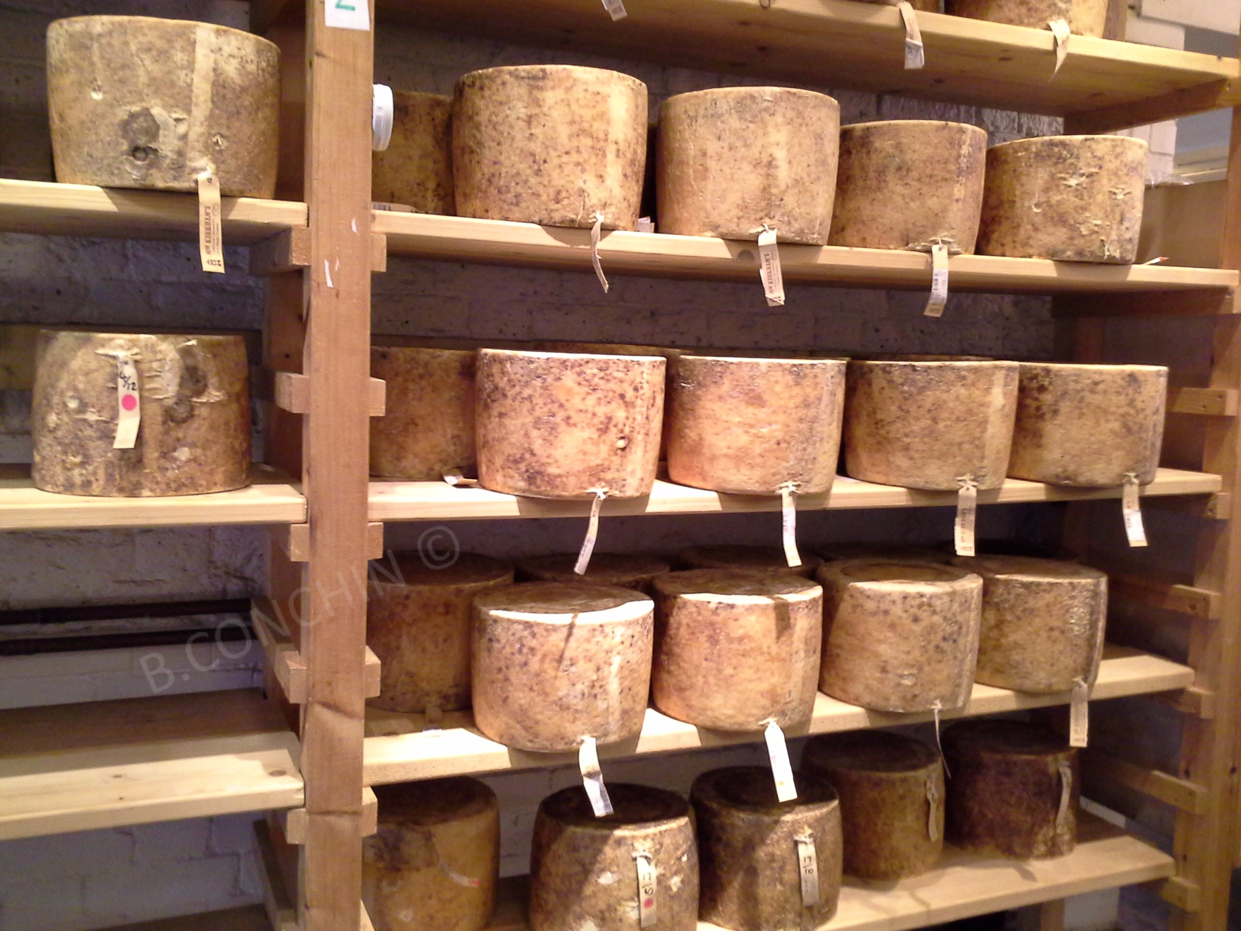 Cheddar en maturation, Londres