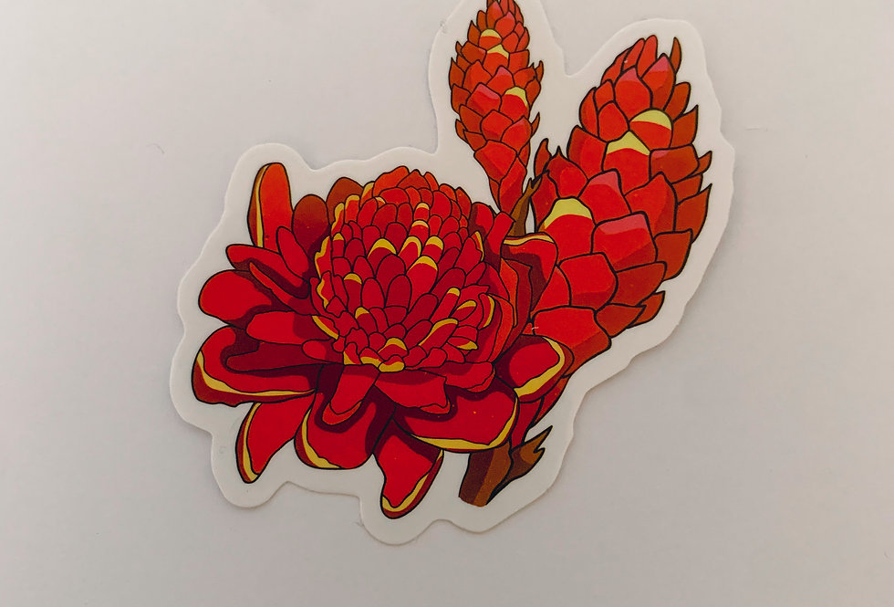 Red Dihila Flower