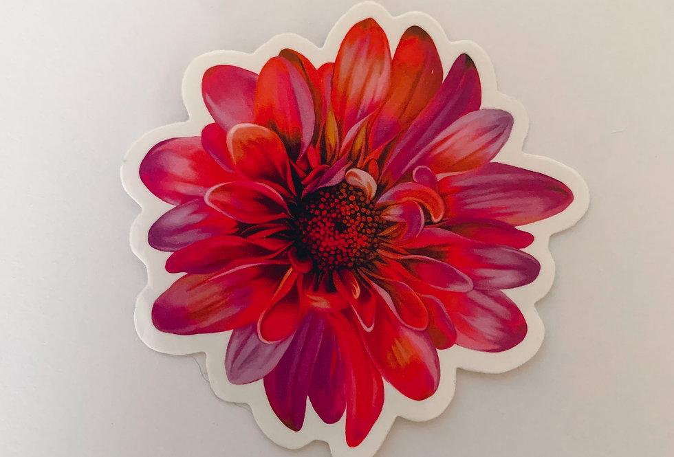 Pink Full Flower