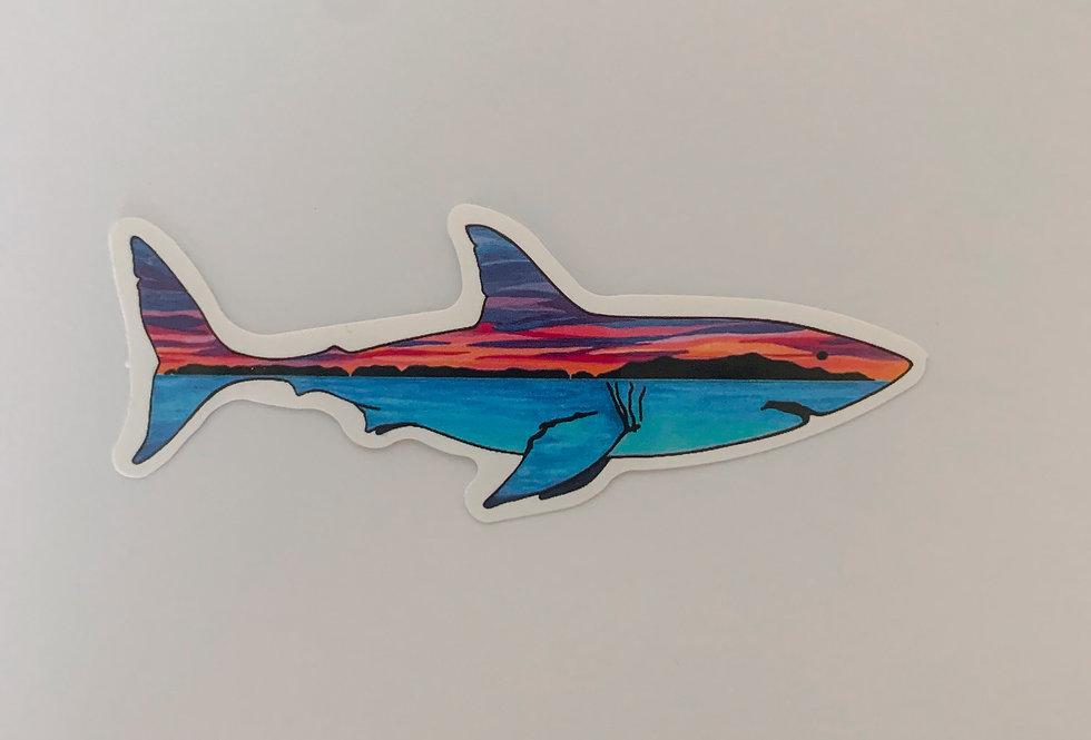 Sunset Shark