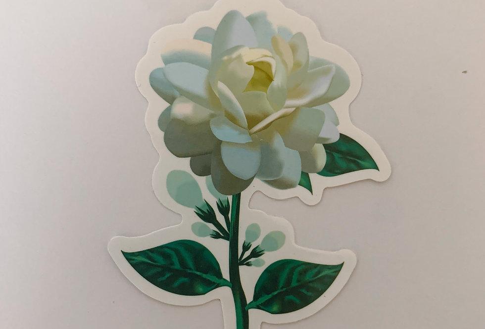 Jamine Flower