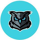 owl turquoise.jpg