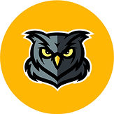 owl yellow.jpg
