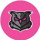 owl pink.jpg