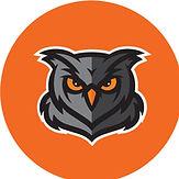 owl orange.jpg