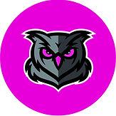 owl hot pink.jpg