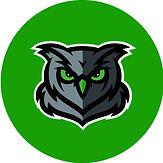 owl green.jpg