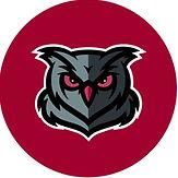 owl red.jpg