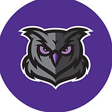 owl purple.jpg