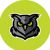 owl safety green.png