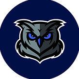 owl navy.jpg