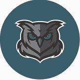 owl eagles green.jpg