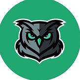 owl teal.jpg