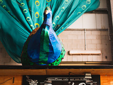 Peacock Bar