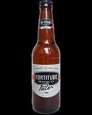 RiverFeast Bundaberg.  Craft brews and mainstream beers.  Fortitude Pacer Ale.