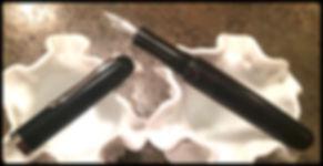 Pen #29a.jpg