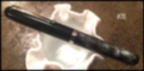 Pen #28.jpg