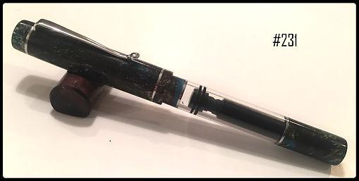 Pen #231.jpg