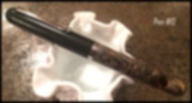 Pen #12.jpg
