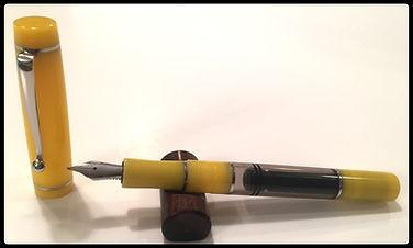 Pen #229a.jpg