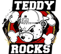 TEDDY ROCKS_edited_edited.png